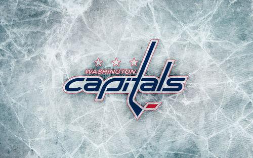 Washington Capitals logo picture 500x313