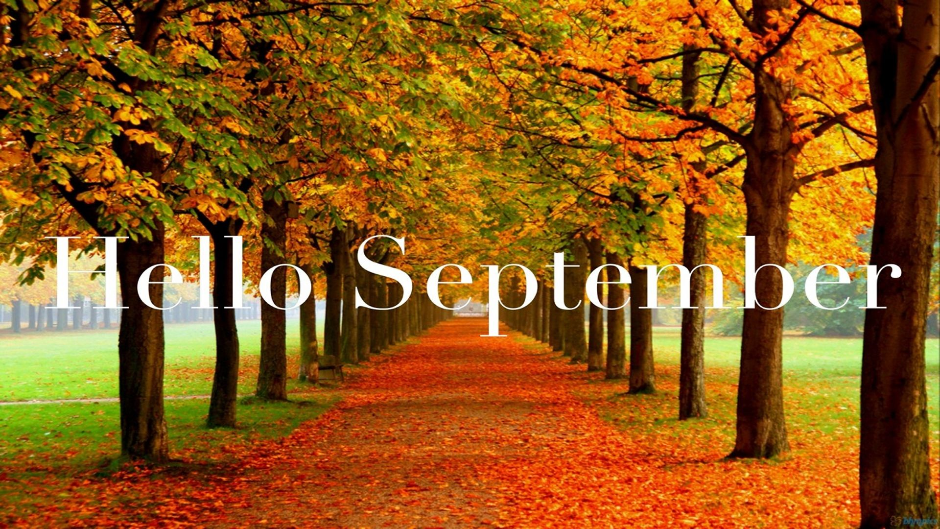 Hello September Wallpaper 1920x1080