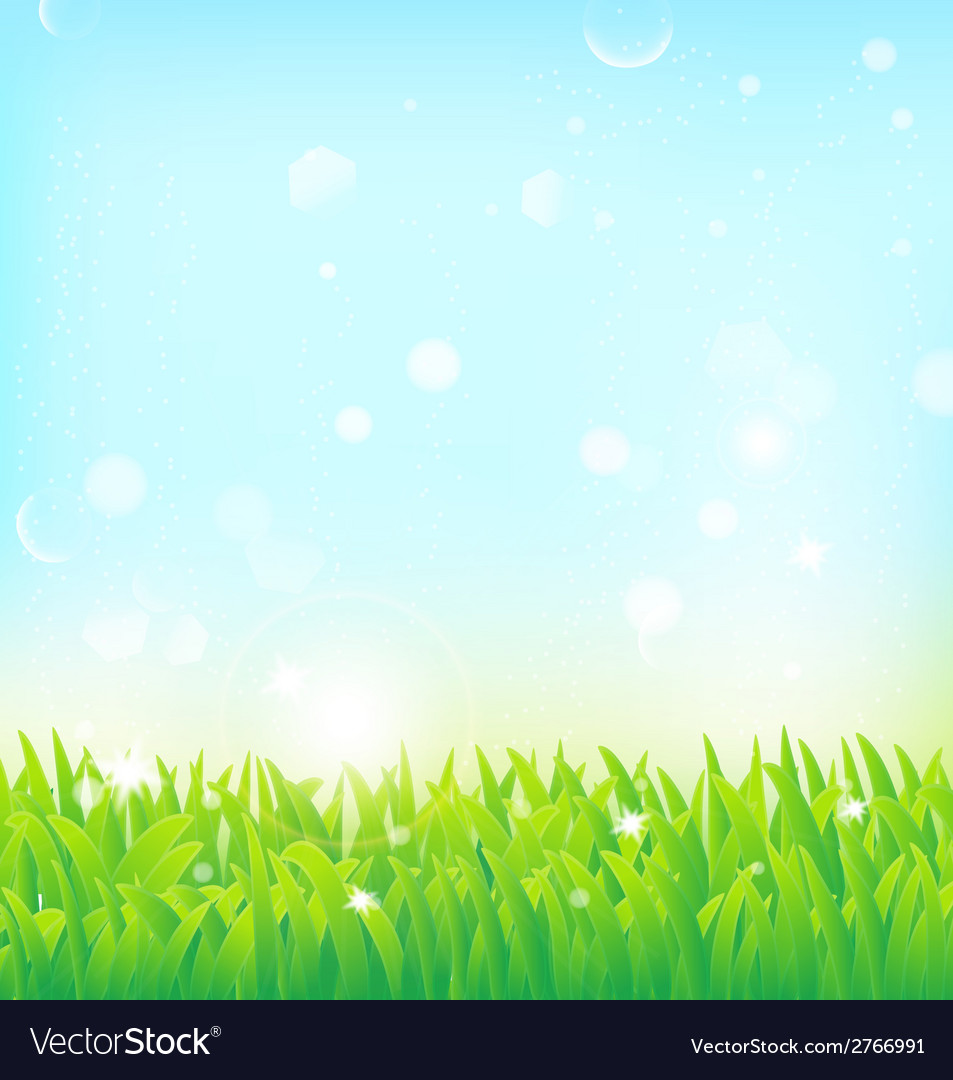 Light spring field background Royalty Vector Image 953x1080