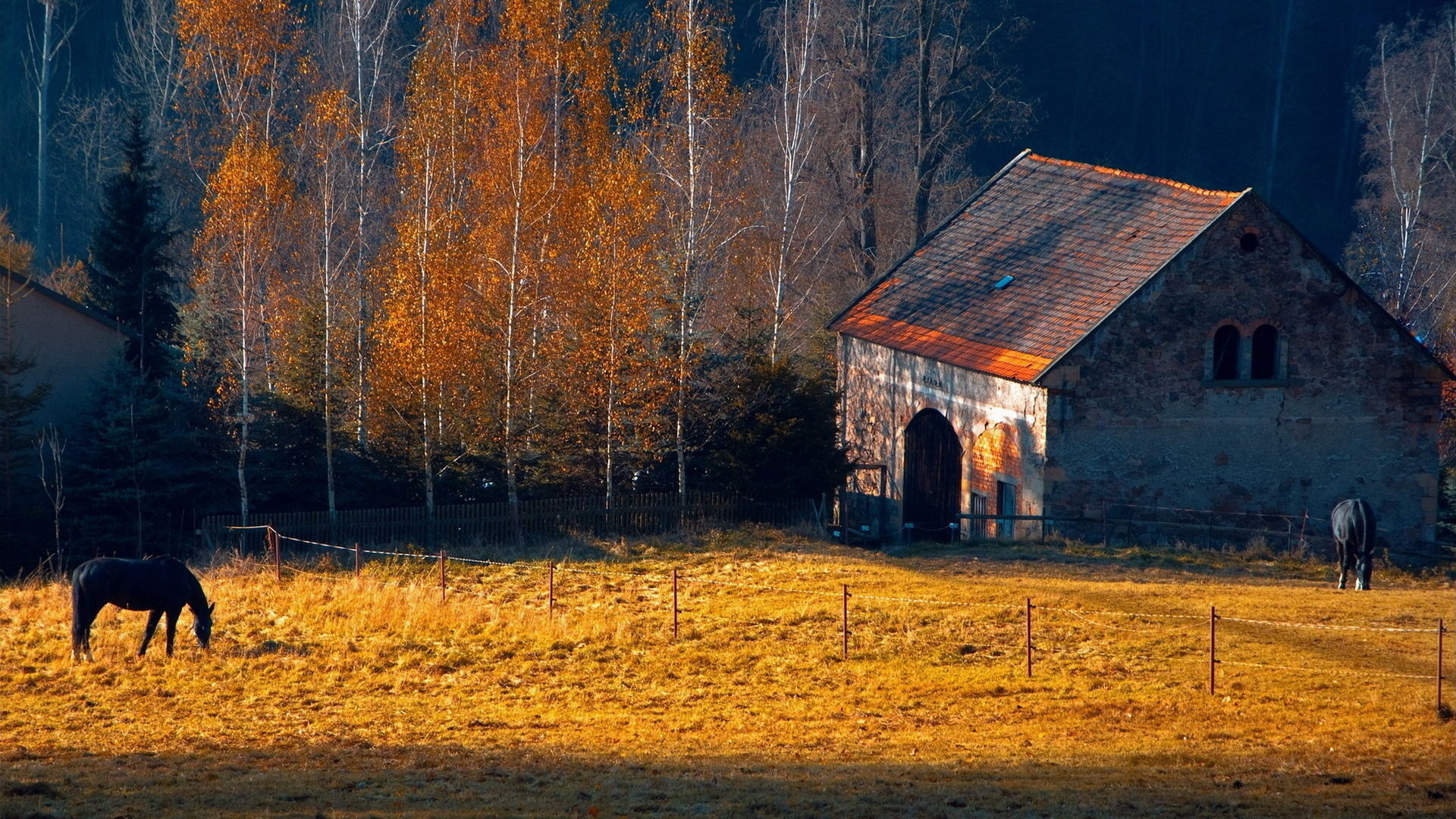 Horses rustic farm barn landscapes buildings autumn fall 1920x1080