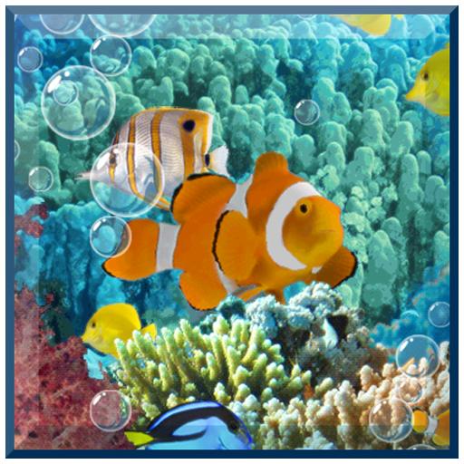 wallpaper for Aquarium Live Wallpaper maternity clothing 512x512