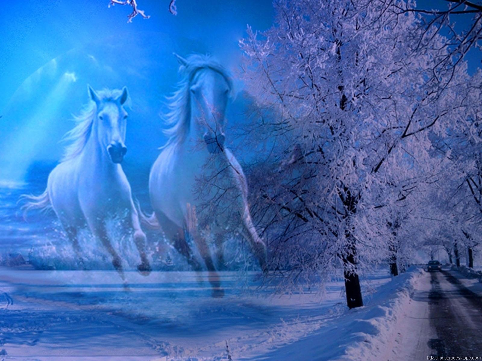 Animals Wallpaper Desktop Background horses on the winter 1600x1200 1600x1200