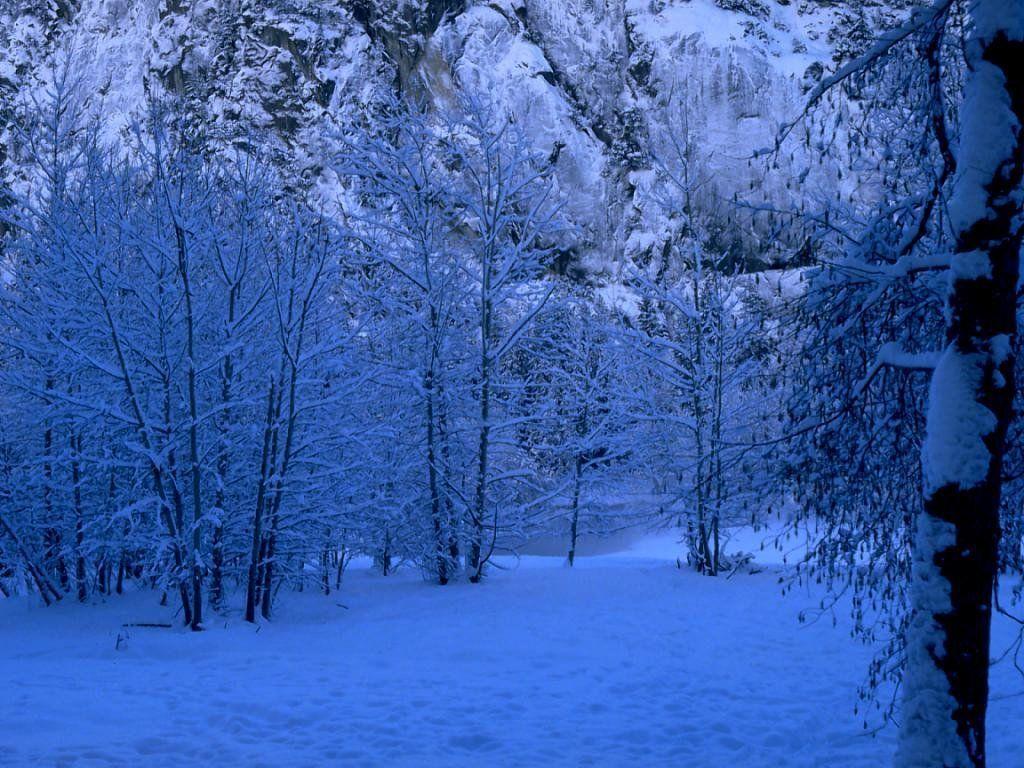 Winter Scene   Christmas Wallpaper 2735688 1024x768