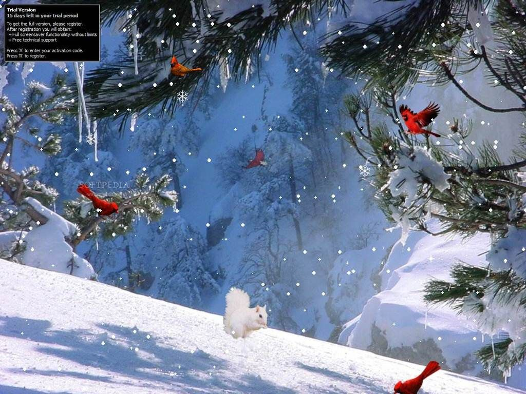 Winter Wallpapers Full HD Group 19201080 Winter Screen Wallpapers 1024x768