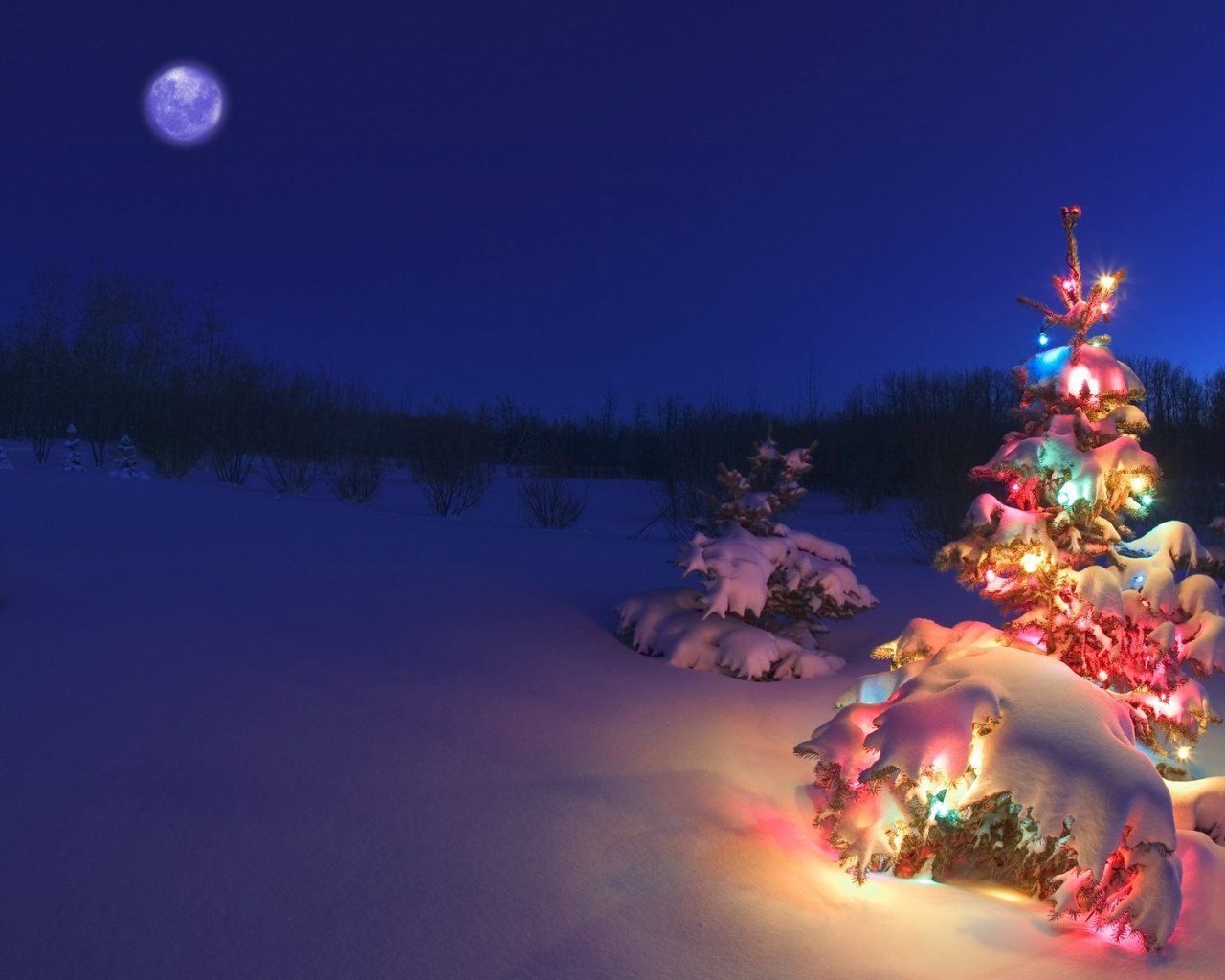 1280x1024 Christmas tree in the snow desktop PC and Mac wallpaper 1280x1024