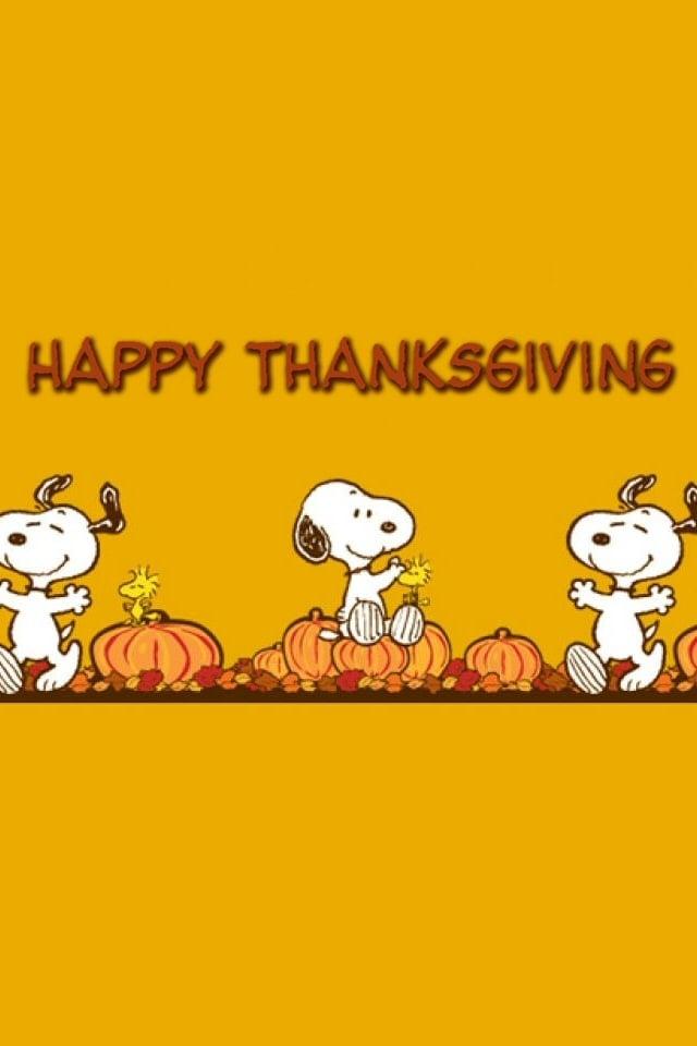 Free Snoopy Thanksgiving Wallpaper Wallpapersafari
