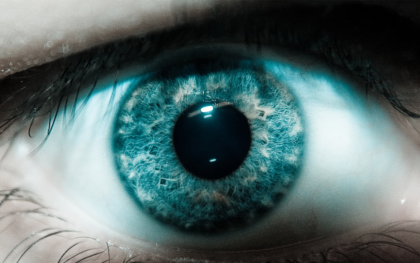 Scary Eye Wallpapers   HD Wallpapers 29128 1440x900