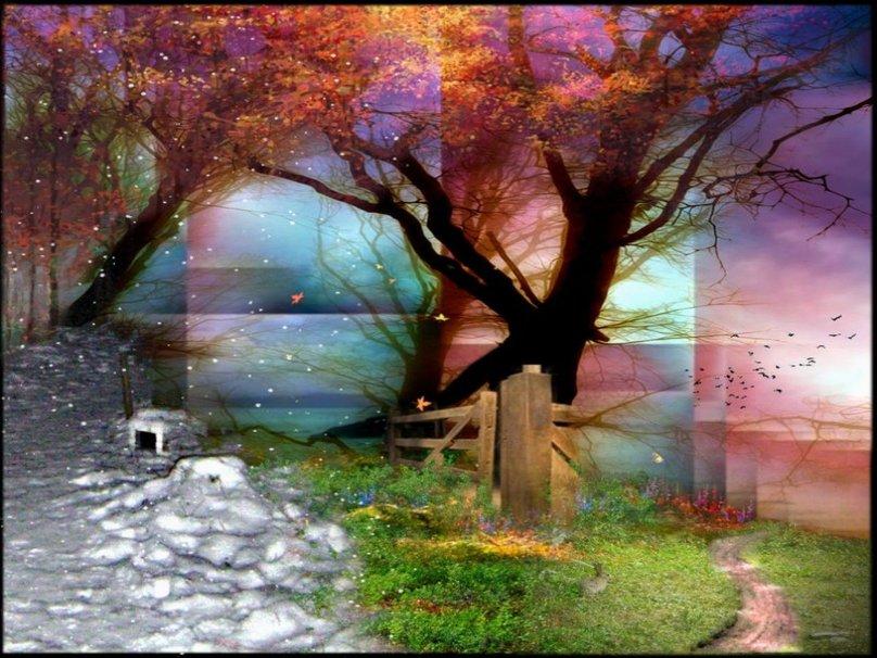 four seasons wallpaper wallpapersafari