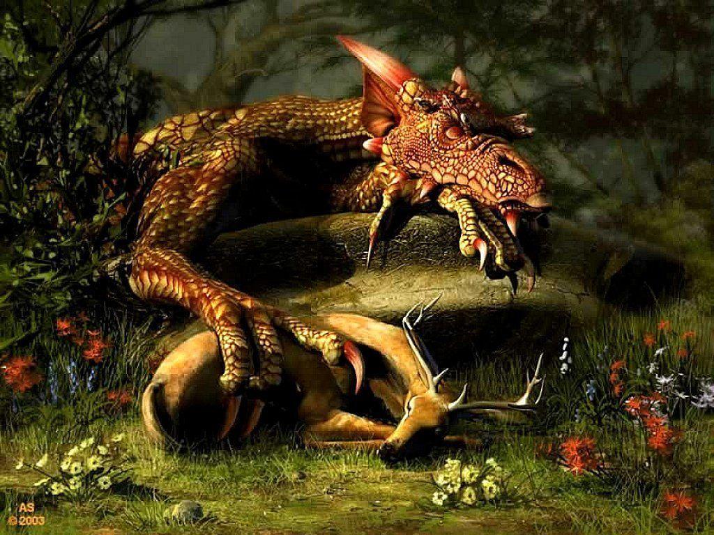Dragon Screensavers And Wallpapers 1024x768