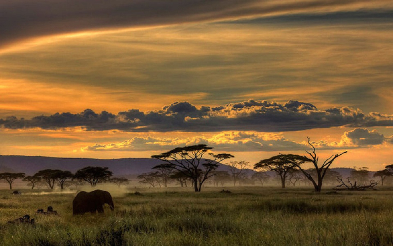 Africa Wallpapers - Wa...