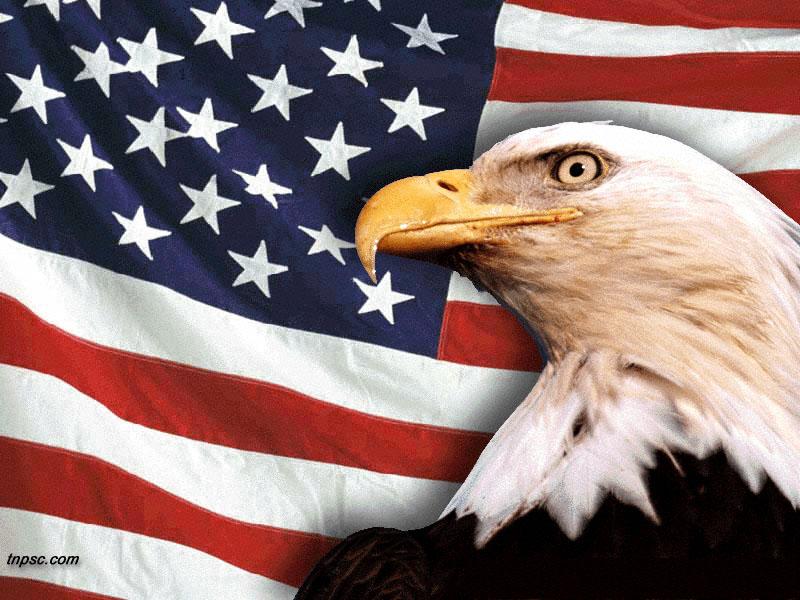 AMERICAN FLAG CLIP ART   WALL PAPER 800x600