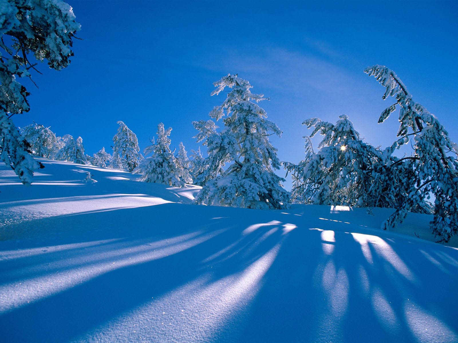 Winter Desktop Wallpapers and Backgrounds 1600x1200