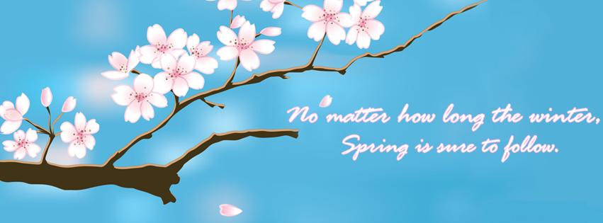 Spring Is Sure To Follow Facebook Coverpng desktop wallpapers and 851x315