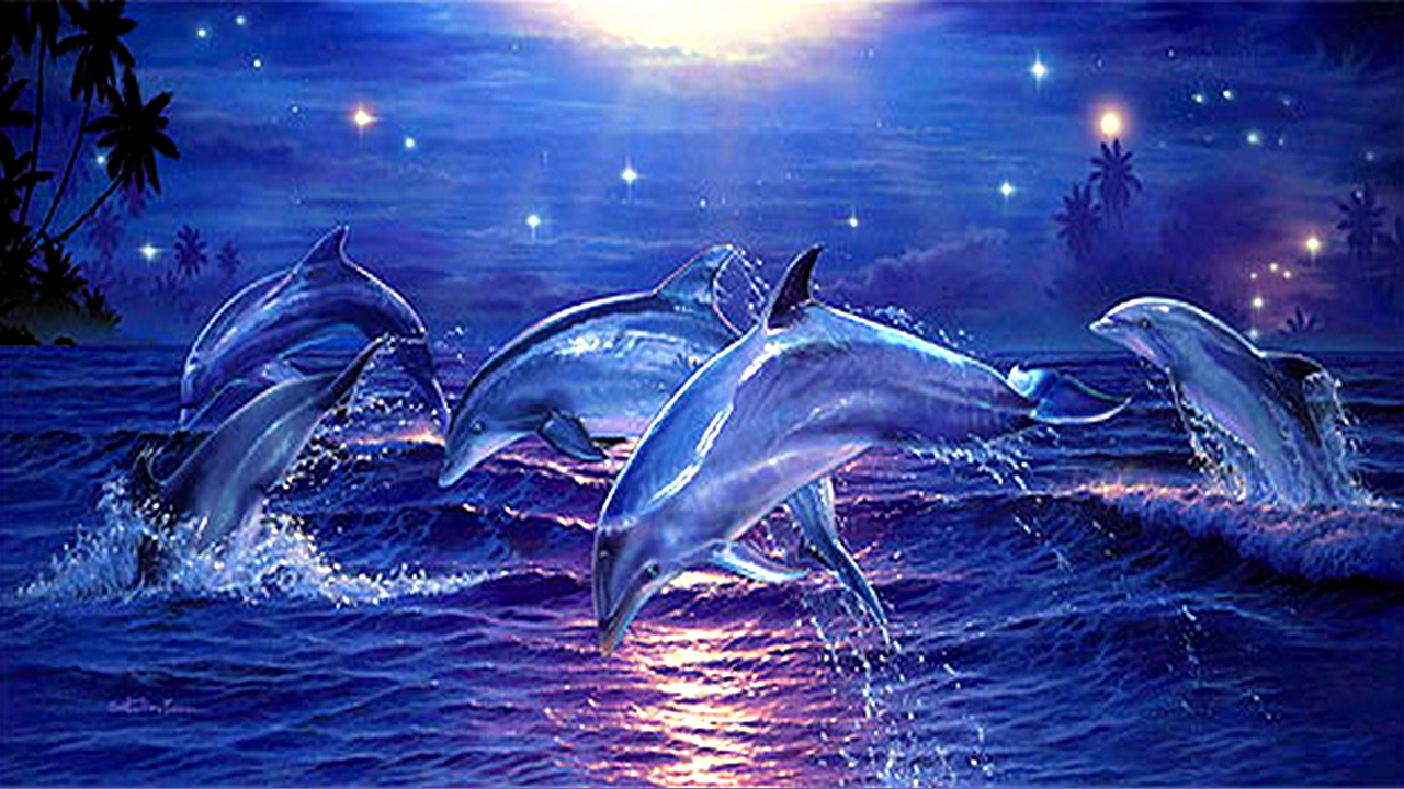 Pink Dolphin Wallpaper Pink Dolphins Wallpape...