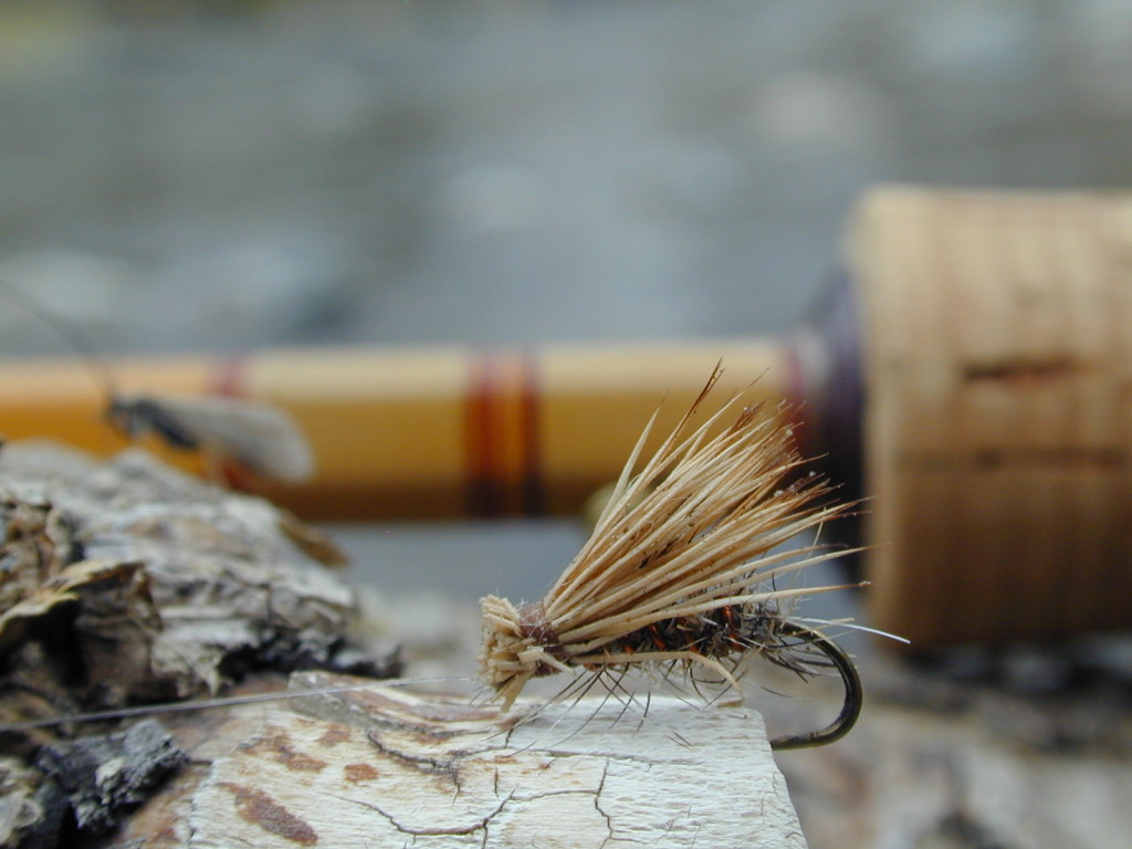 Fly Fishing Wallpaper Cake Ideas And Designs 1024x768