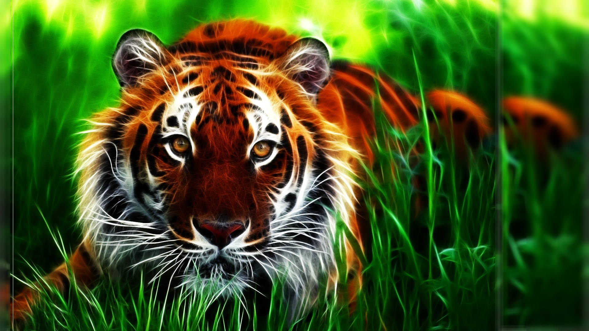 1920x1080px cool tiger backgrounds - wallpapersafari