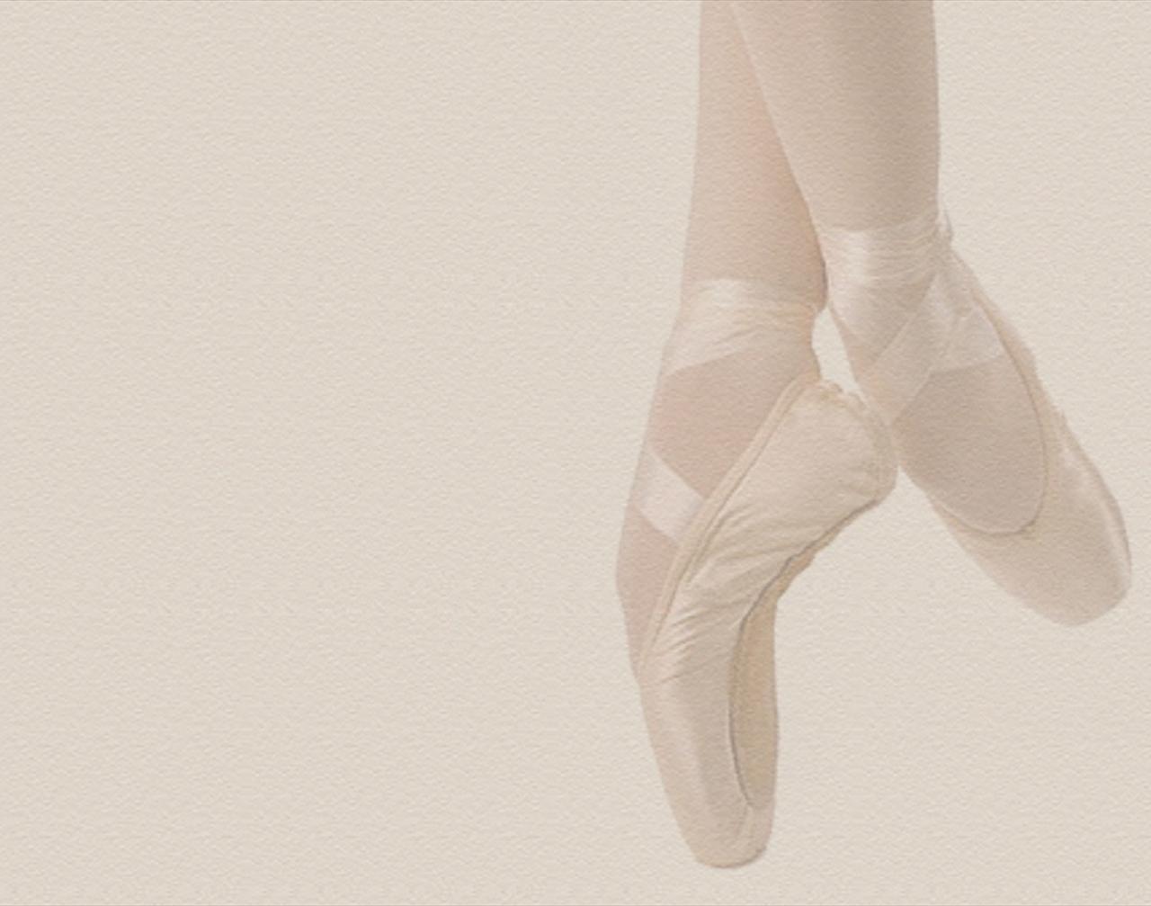 [47+] Pointe Shoes Wallpaper on WallpaperSafari