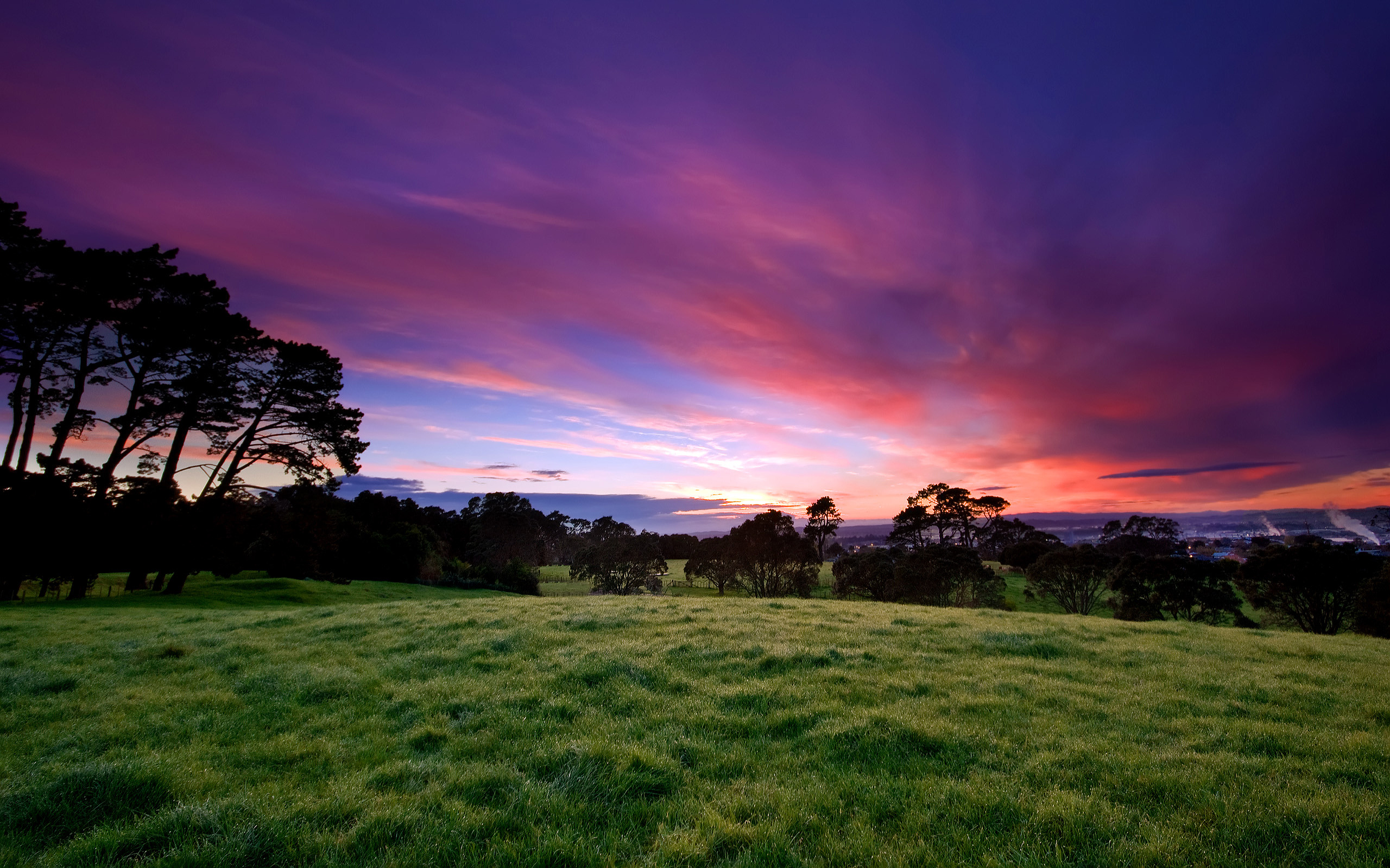 Beautiful Morning Wallpapers HD Wallpapers 2560x1600