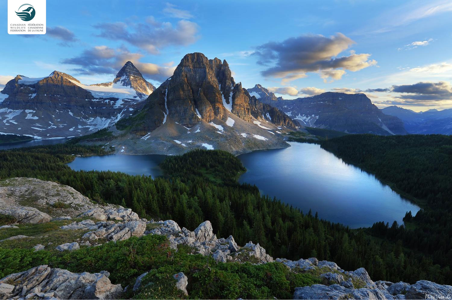 Canadian Wildlife Federation Mount Assiniboine 1500x998