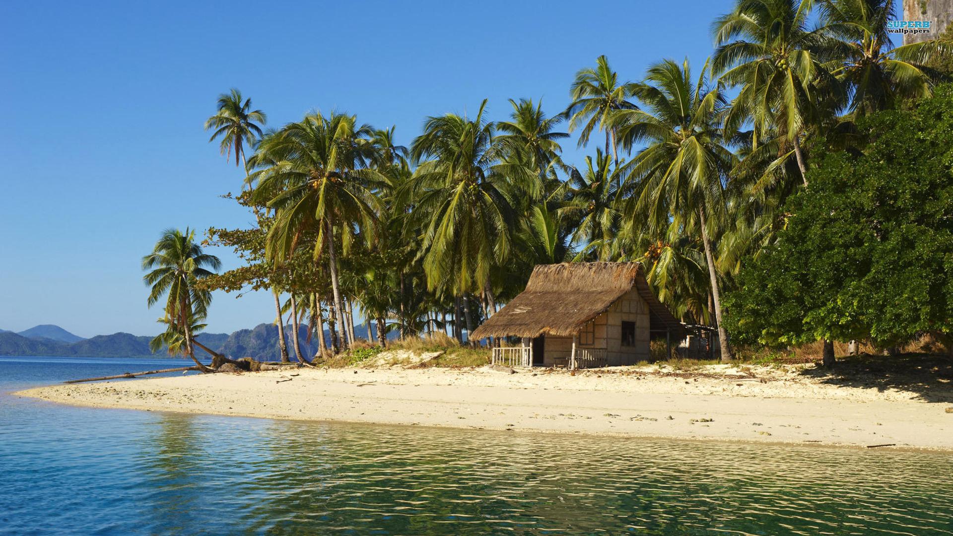 Beach House On Tropical Island HD Wallpaper 1920x1080 ID28919 1920x1080
