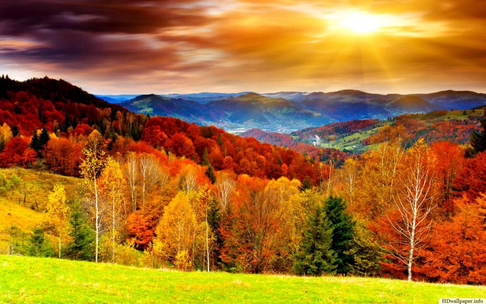 Autumn desktop wallpaper   SF Wallpaper 1600x1000
