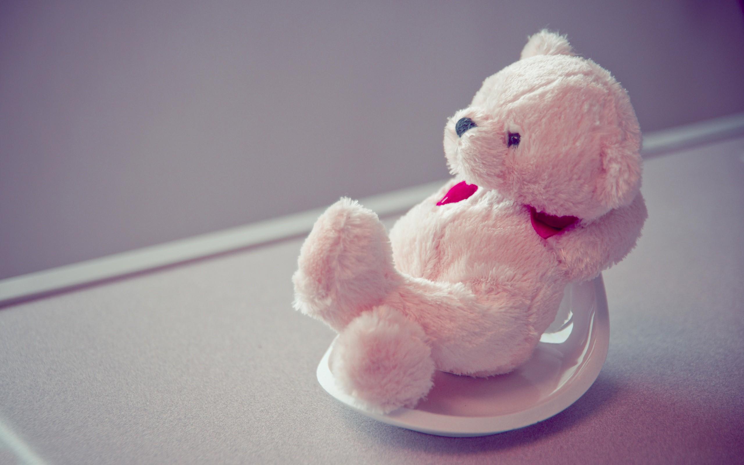Teddy Bear Cute Wallpaper 11087 Wallpaper Cool Walldiskpapercom 2560x1600
