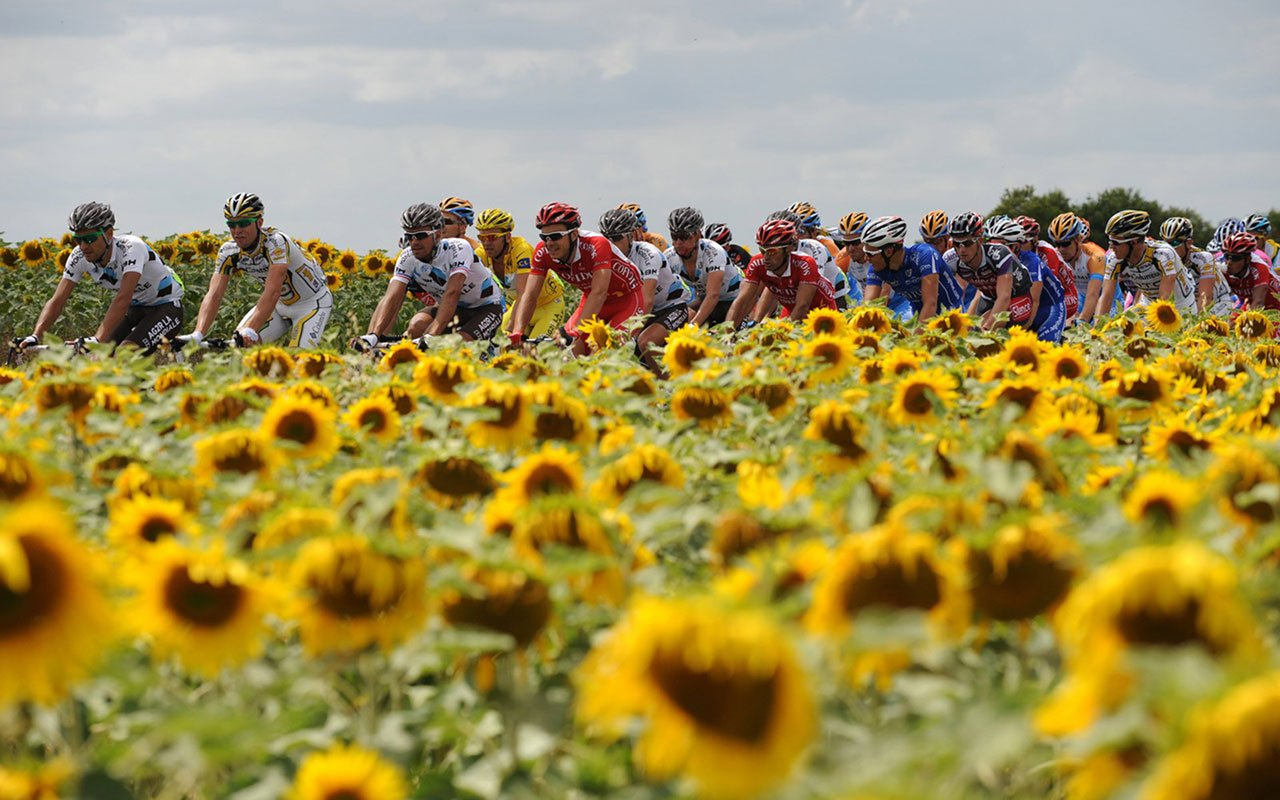 Tour de France   Cycling 7 Sports Wallpapers 1280x800