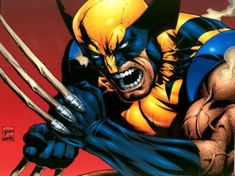 Wolverine images Wolverine Wallpaper wallpaper photos 3508352 800x600
