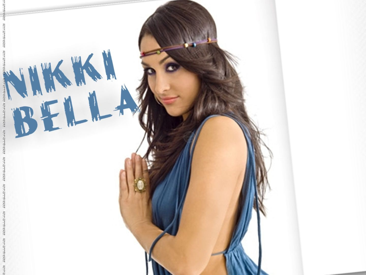WALLPAPERS Nikki And Brie Bella gemelas   WALLPAPERS WWE TNA AAA 1440x1080