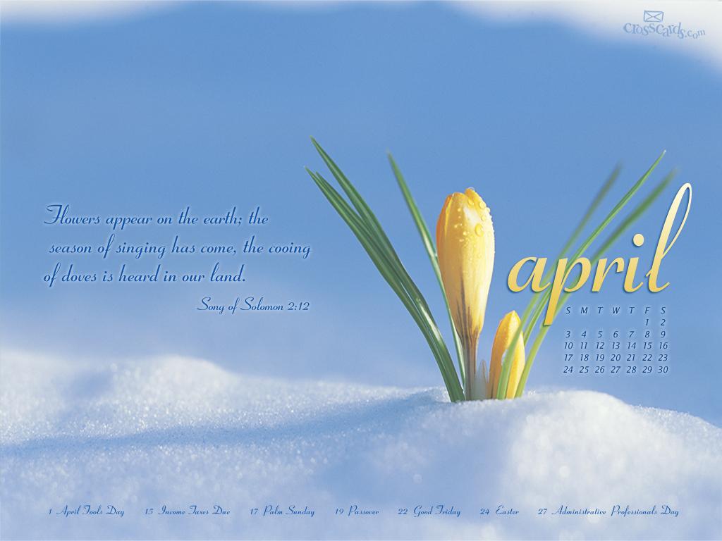 April 2011   Flowers Desktop Calendar  Monthly Calendars 1024x768