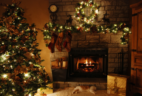 Wallpaper christmas new year christmas tree cat fireplace gift 590x400