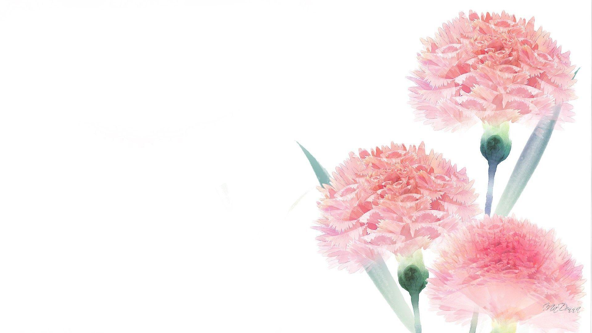 Free Download Simple Flower Desktop Wallpapers Top Simple Flower