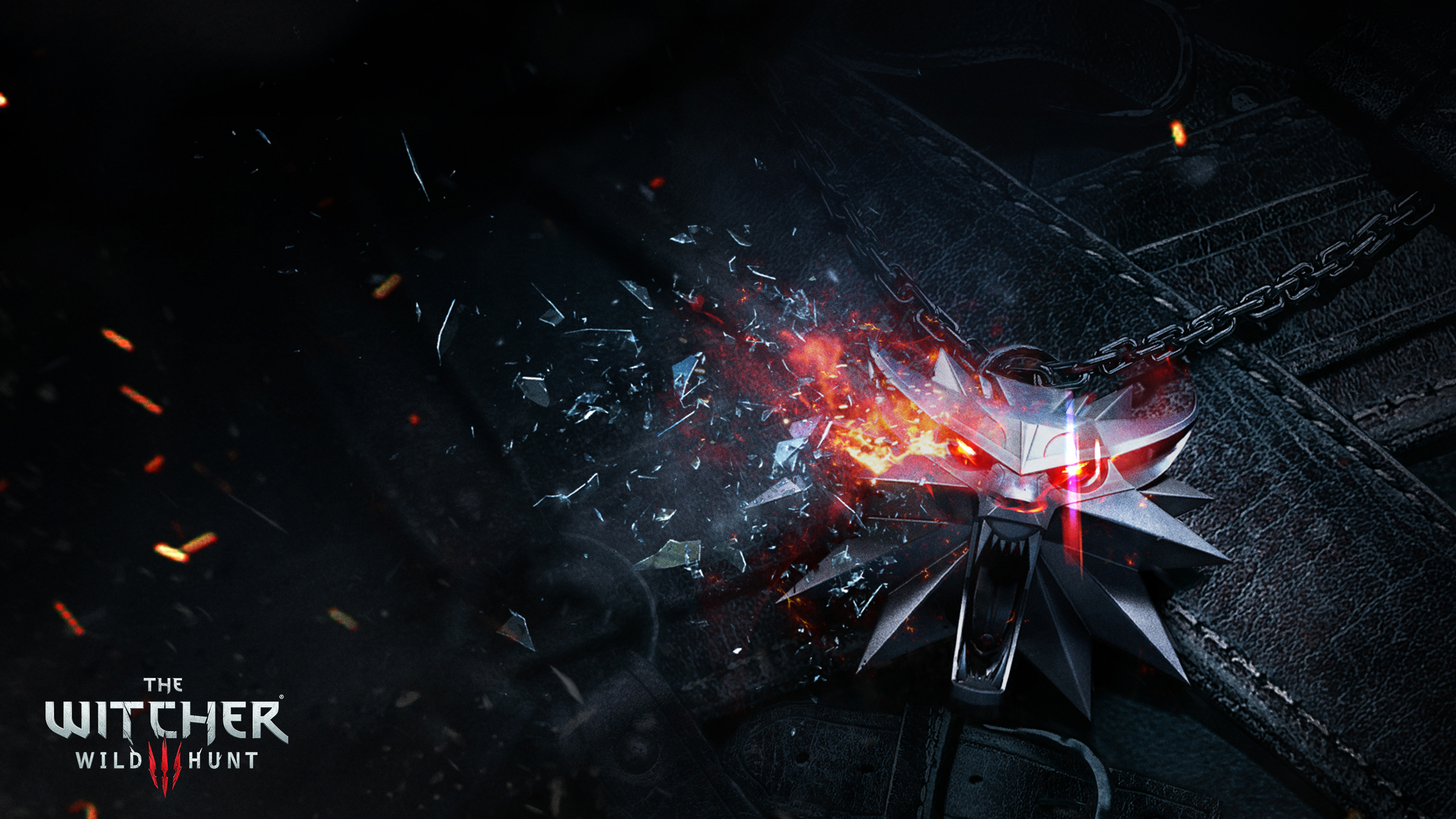 649 The Witcher 3 Wild Hunt HD Wallpapers Background Images 2560x1440