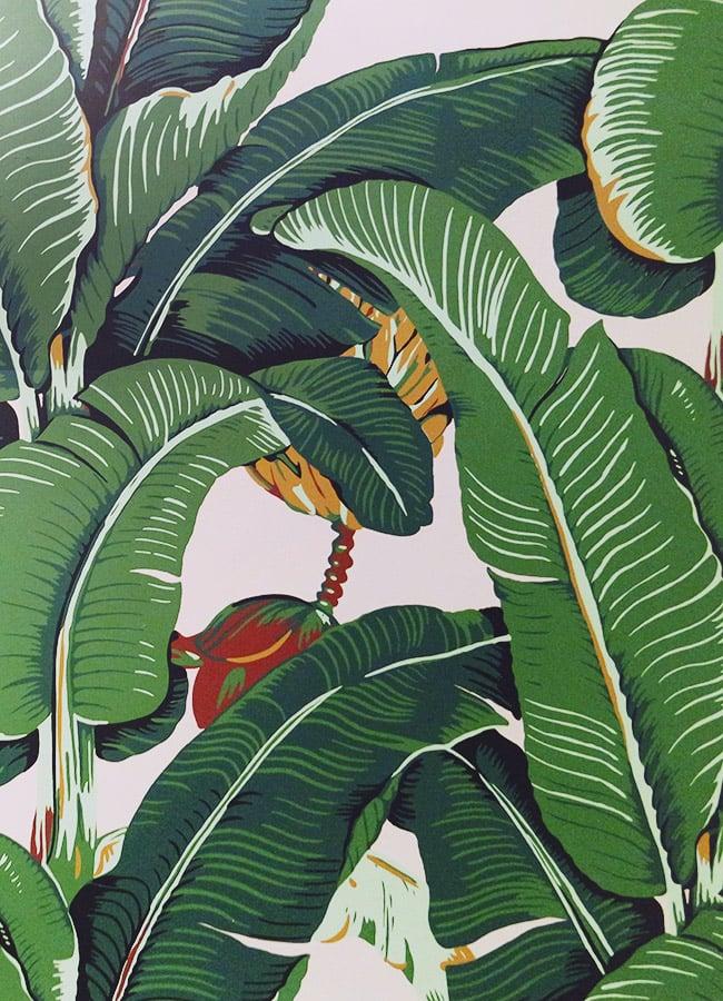 palm wallpaper beverly hills hotel wallpapersafari. Black Bedroom Furniture Sets. Home Design Ideas