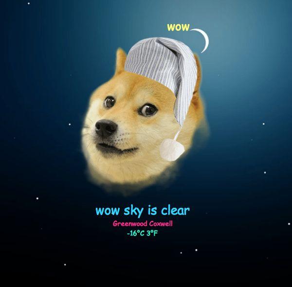Doge Meme Wallpaper 600x590