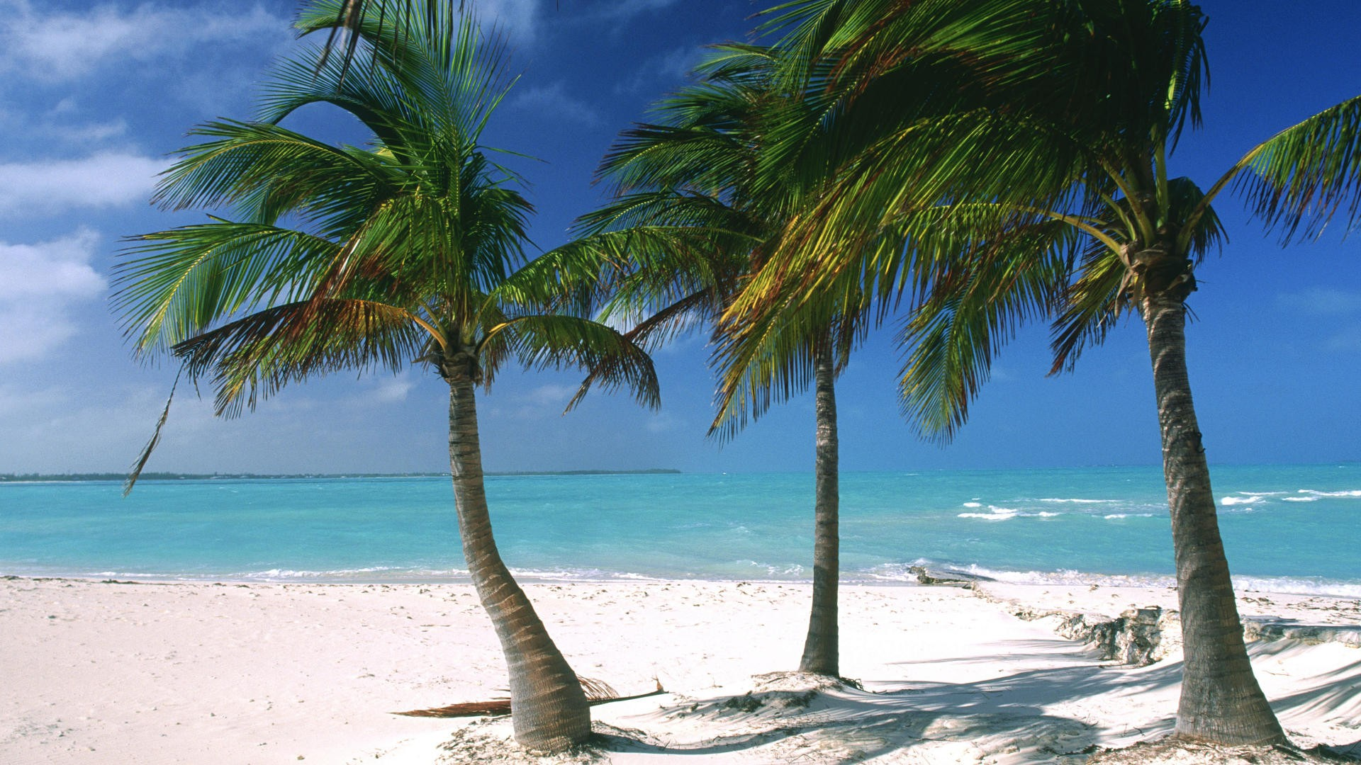 Ocean Beach Wallpaper 1920x1080 Ocean Beach World Islands Palm 1920x1080