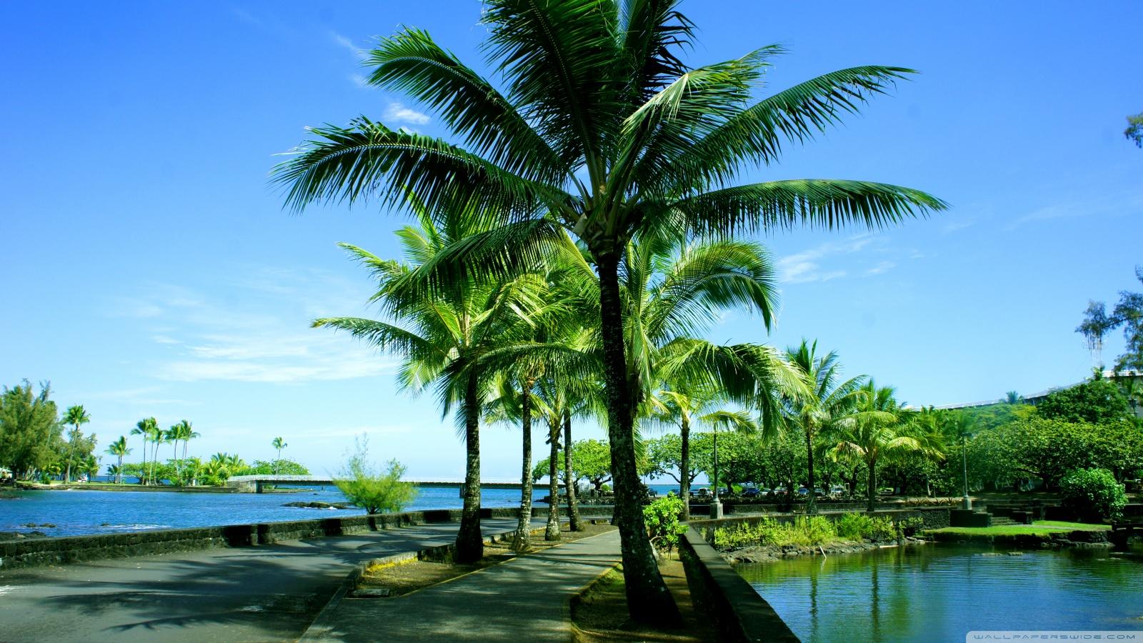 Landscape Desktop HD Wallpapers   Hawaii HD WALLPAPERS 1600x900