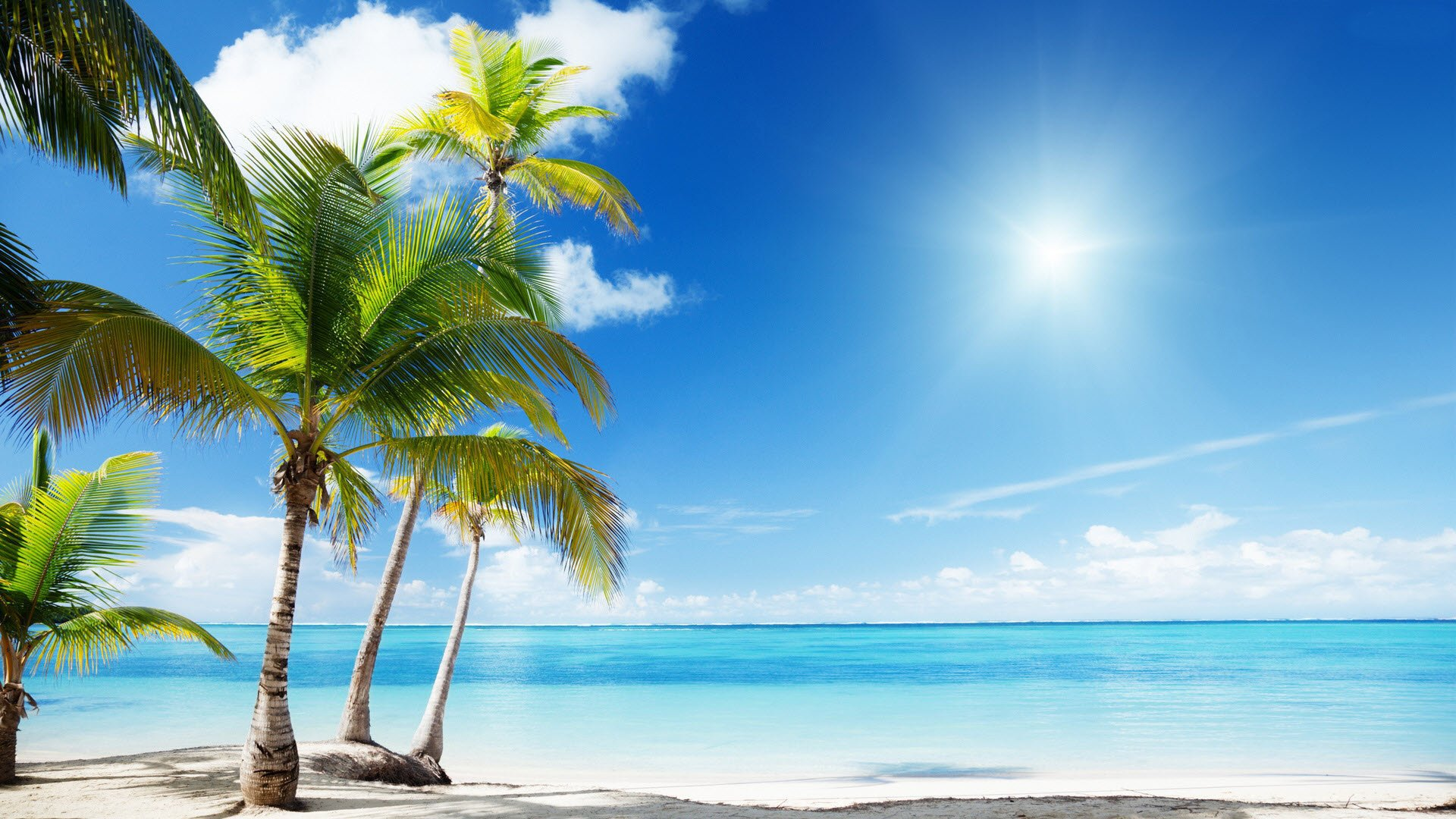 Sunny Tropical Beach Wallpapers 1920x1080