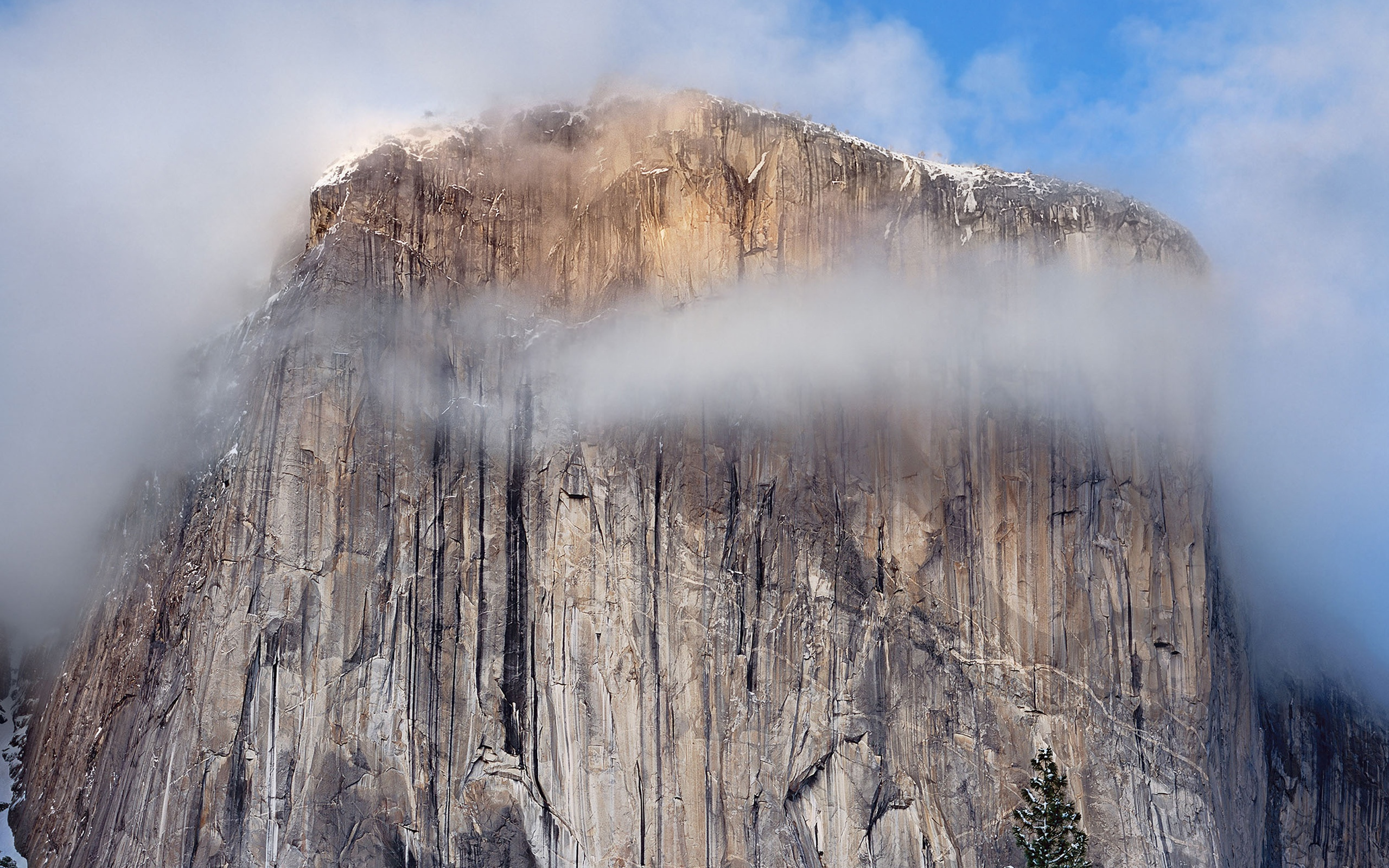 Yosemite Cliff Wallpapers HD Wallpapers 2560x1600