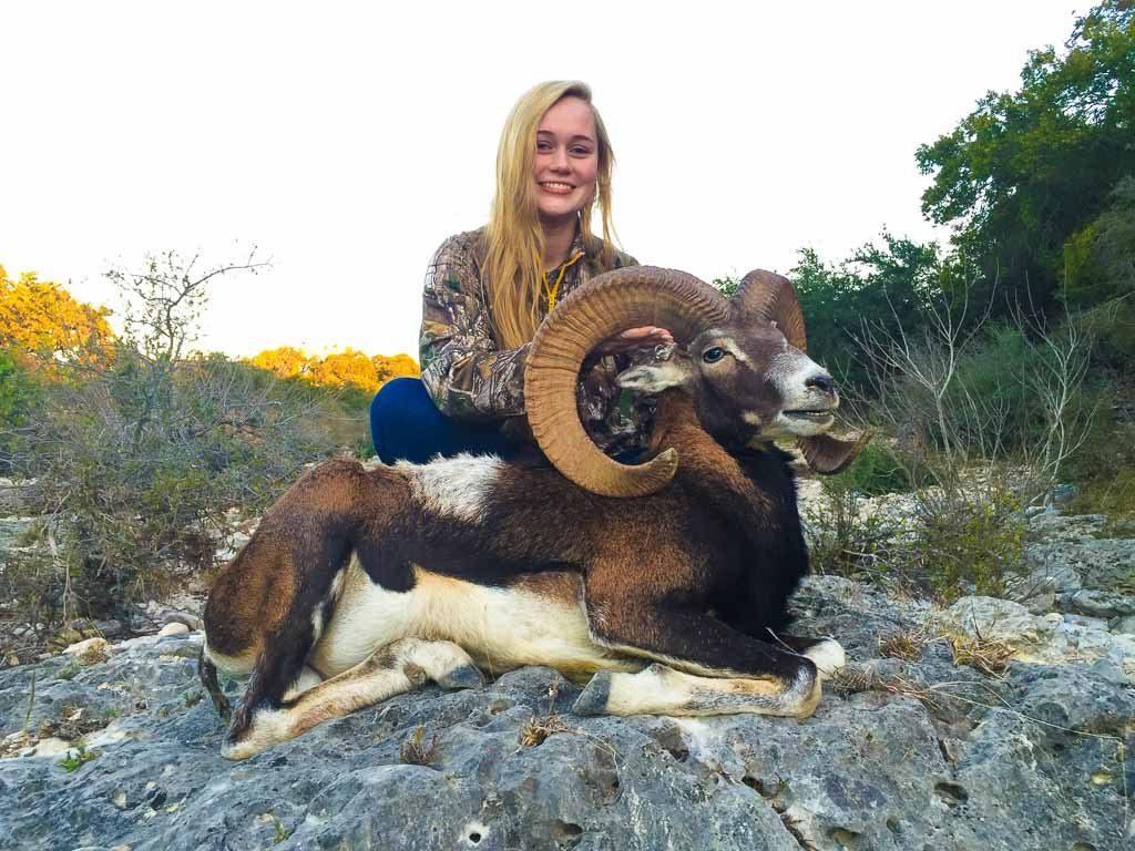 mouflon hunting   OX Ranch 1024x768