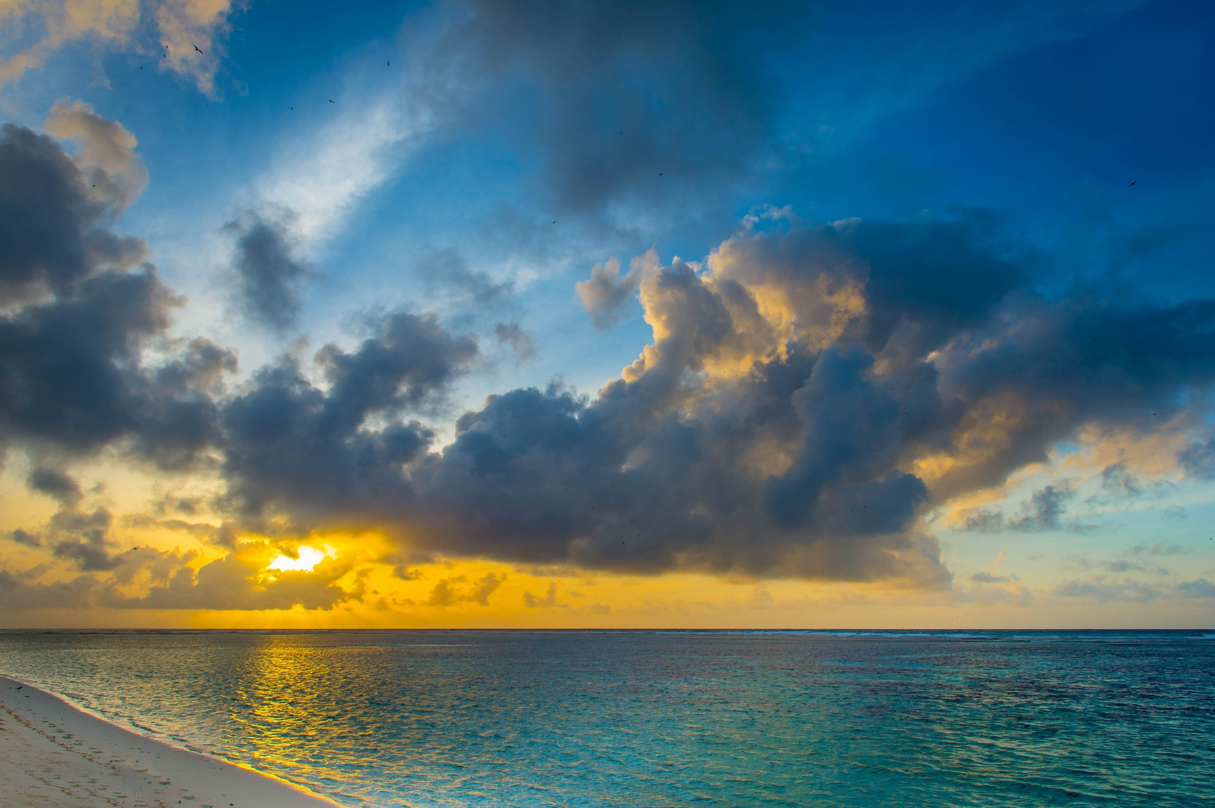 dawn peace sea landscape birds freedom hd wallpaper 2500x1664