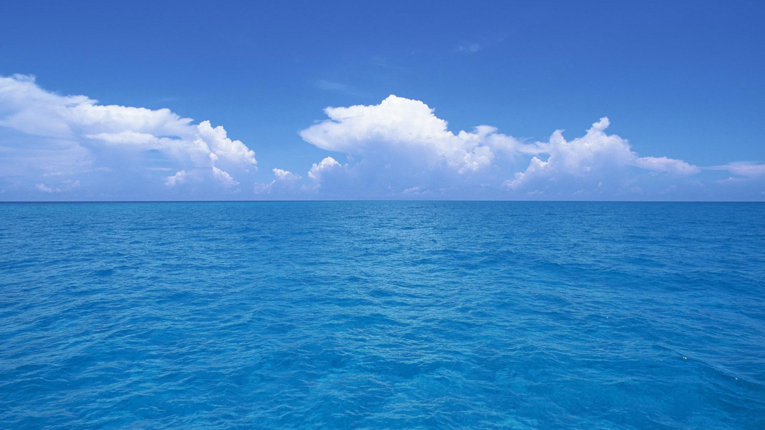 Ocean HD Wallpapers 2560x1440