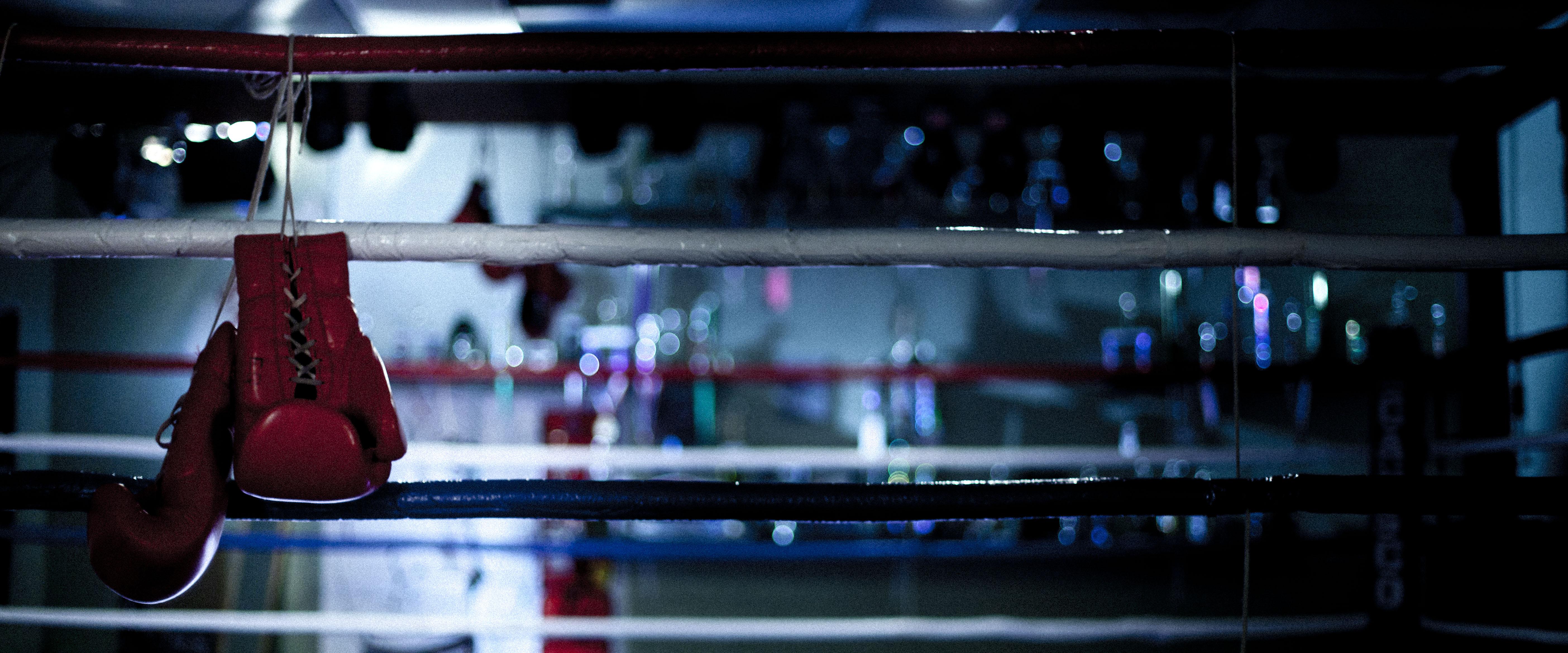boxing ring wallpaper wallpapersafari