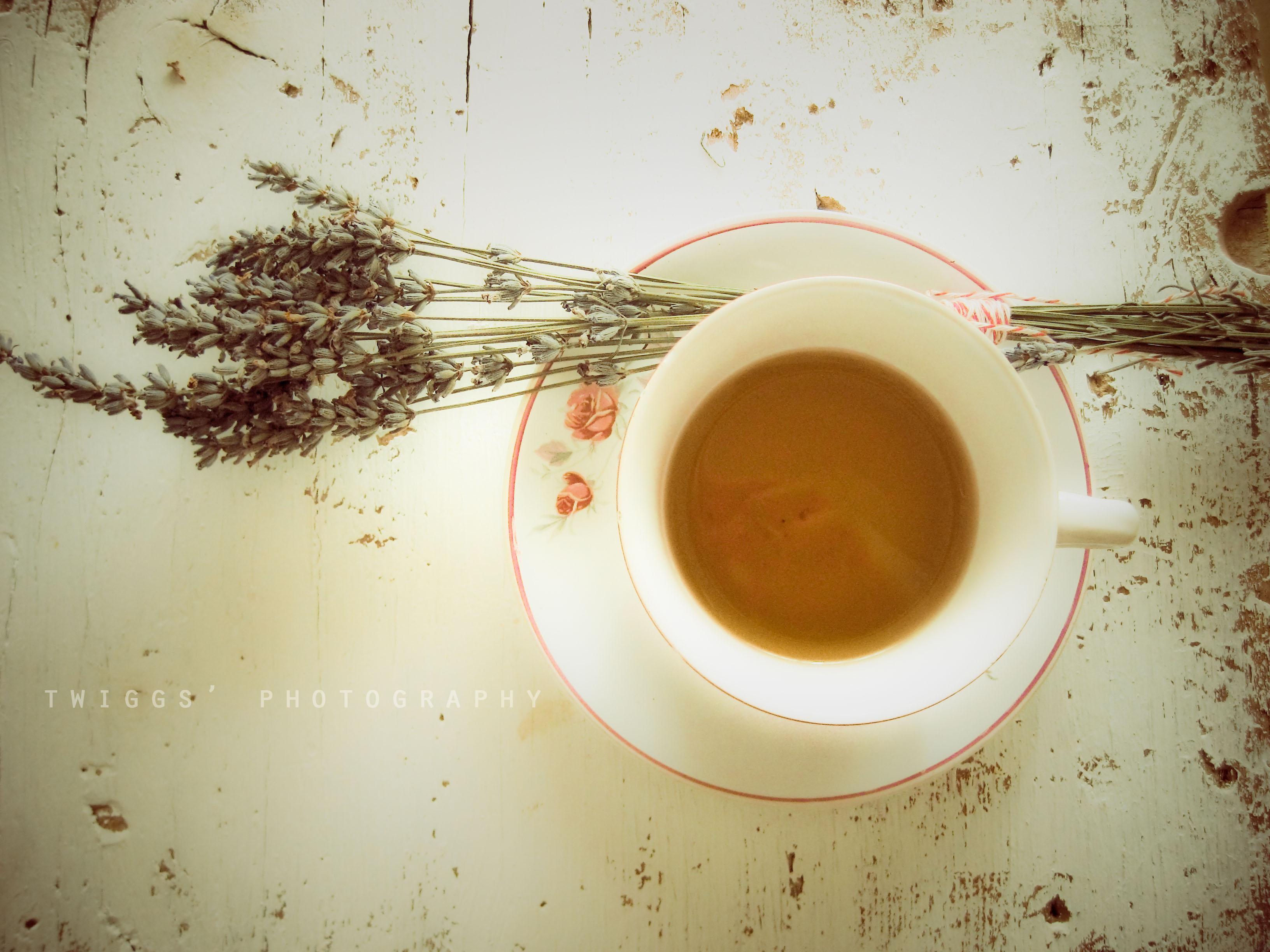 cup of tea - HD3264×2448