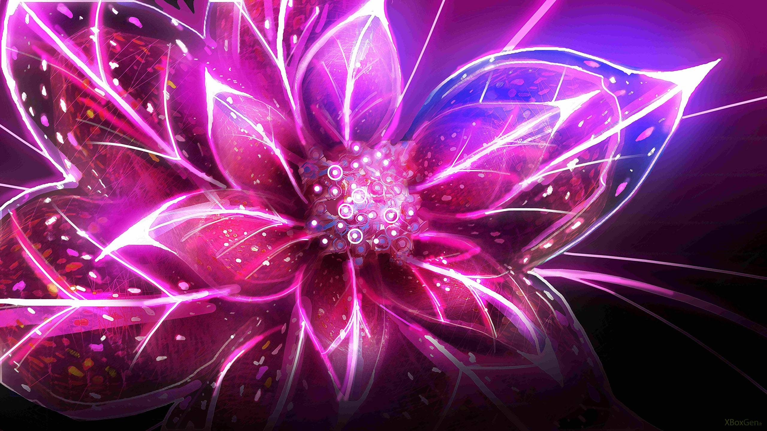 Abstract Flowers Wallpaper 2560x1440 Abstract Flowers Digital Art 2560x1440