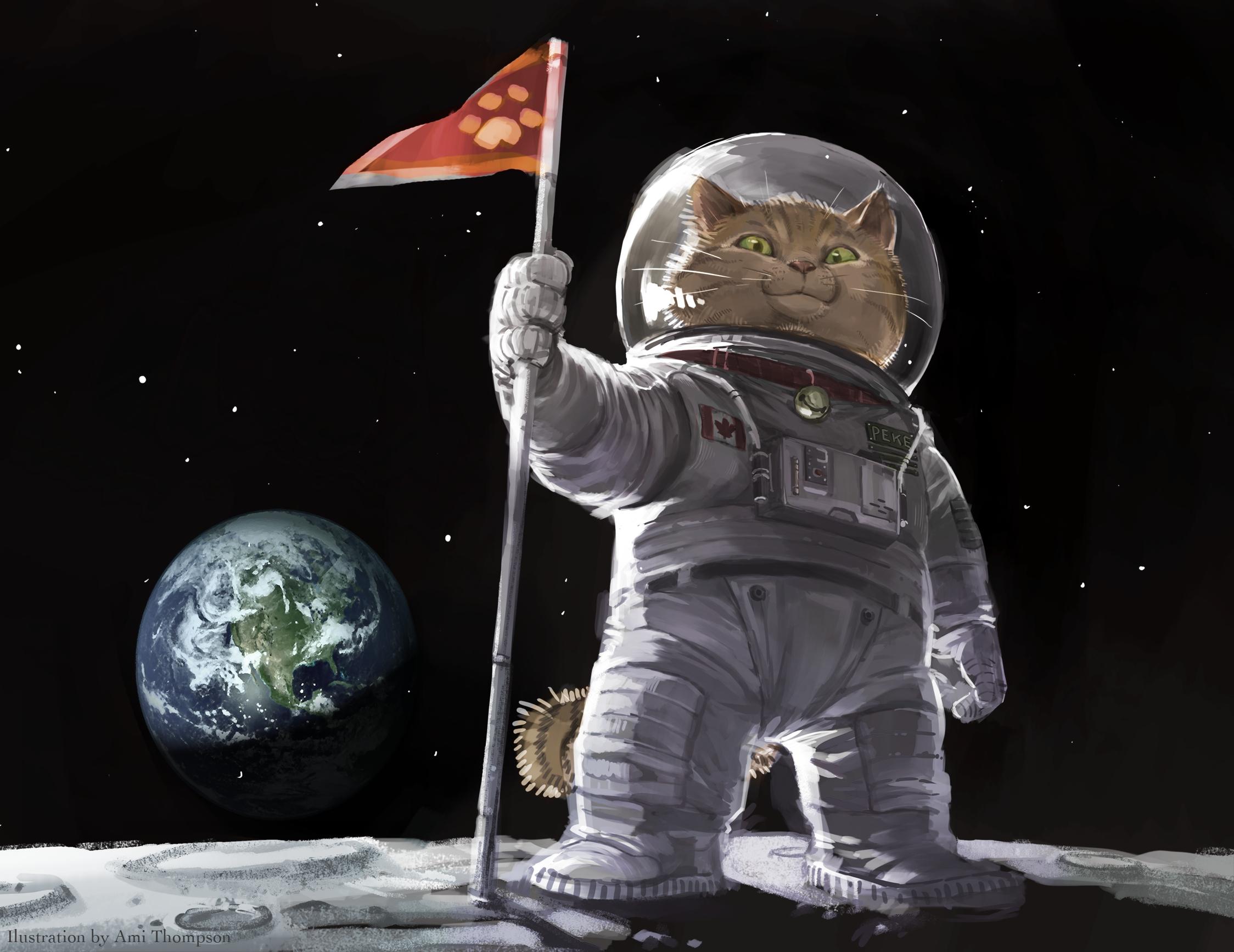 Ami Thompson original cat space planets humor wallpaper 2248x1734 2248x1734