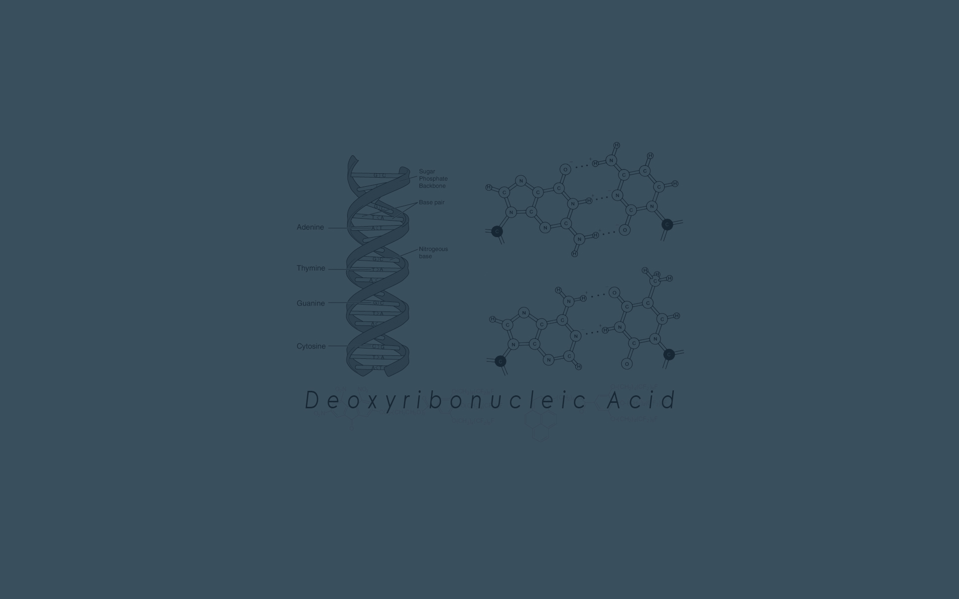 Biology Genetics Wallpaper 1920x1200 DNA