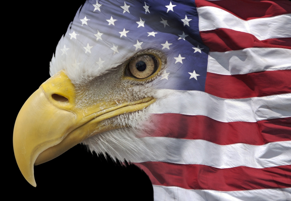 American Flag Eagle Wallpapers Hd Pictures 1000x693