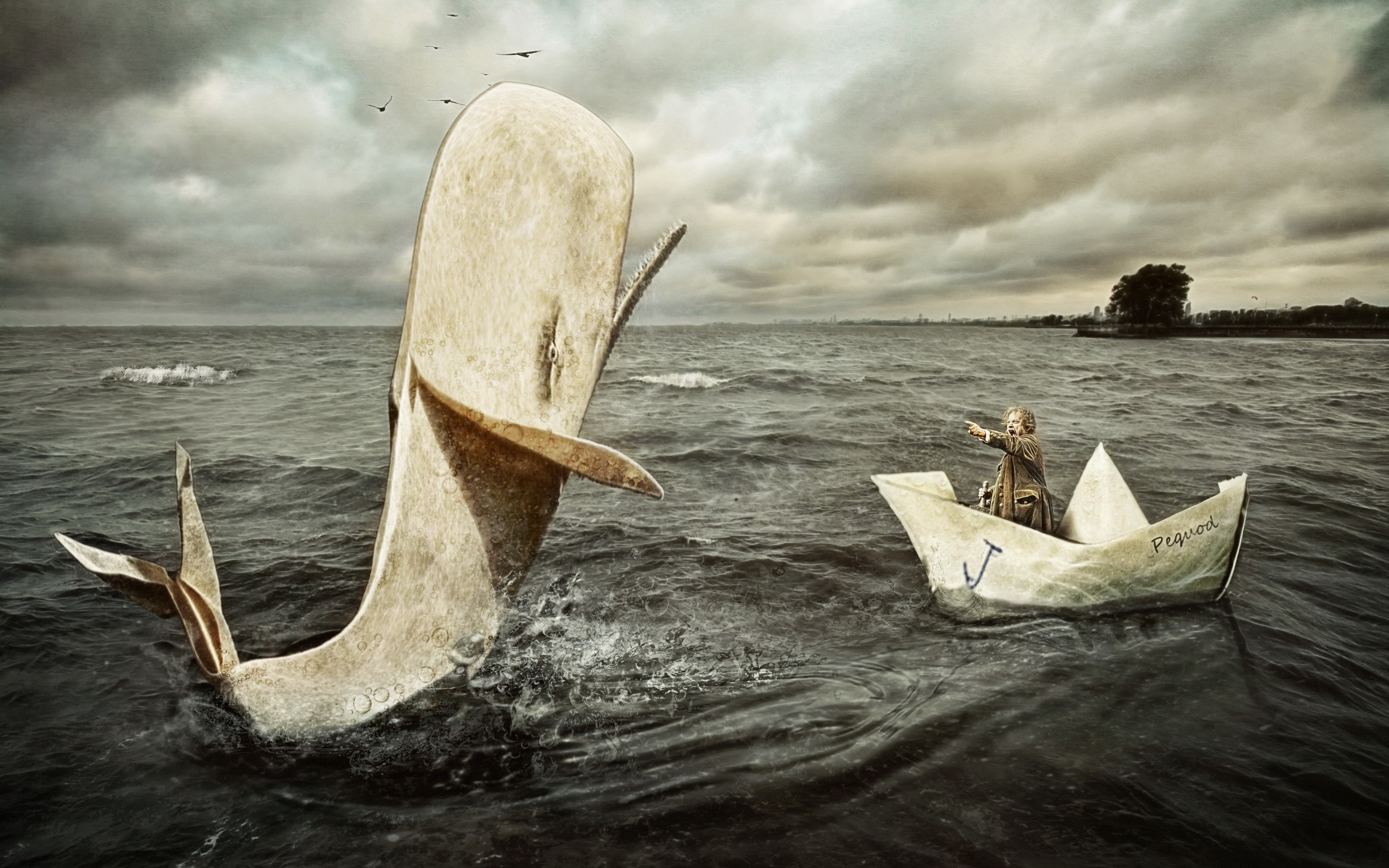 debate-situations-in-moby-dick-ass-up-gallery