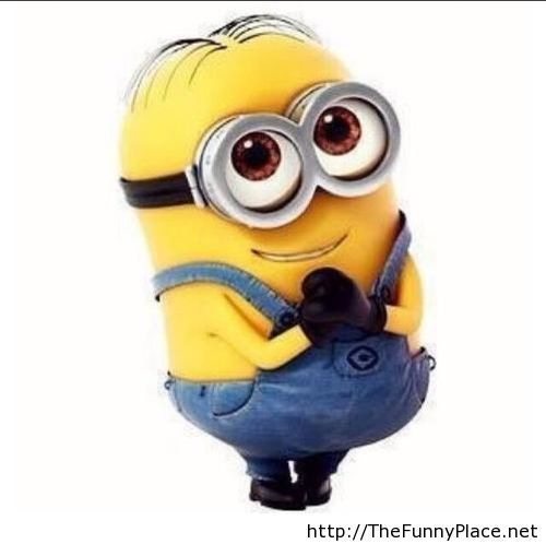 Minions funny wallpaper one in a minion Pinterest Minions Funny 500x498